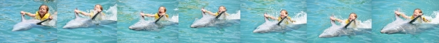 FL Dolphin Pull