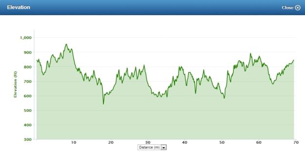Goatneck Elevation